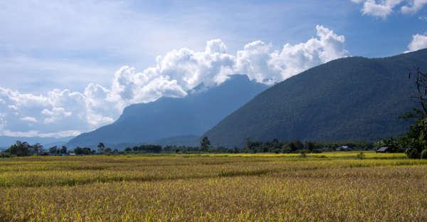 La montagne Doi Chiang Dao dans les nuages