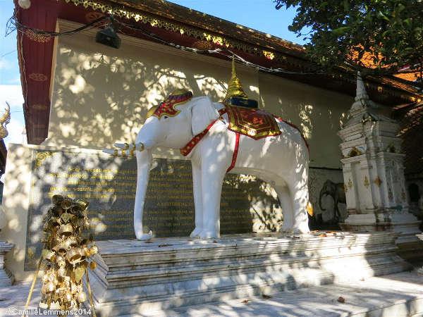 éléphant blanc Doi Suthep