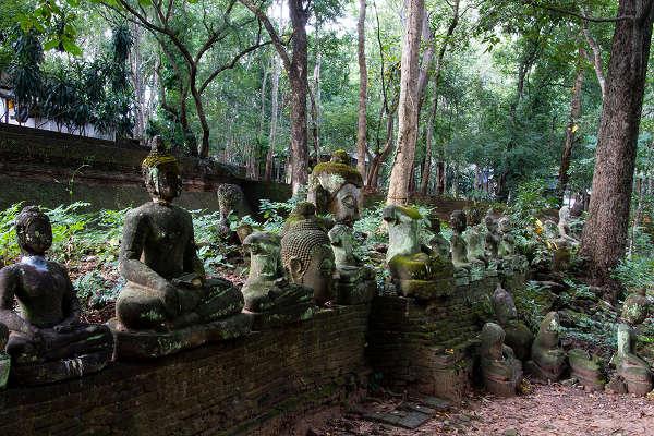 Statues de Bouddha - Wat Umong