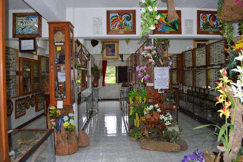 Musée des insectes de Chiang Mai