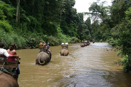 Trek - Rivière sur dos d'éléphants